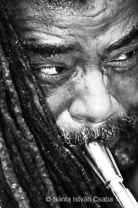 Wadada Leo Smith - Saalfelden Jazz Festival, 2013