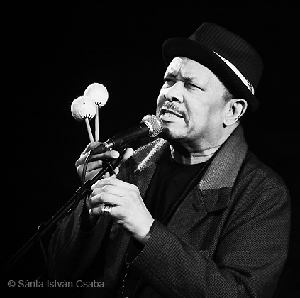 Roy Ayers - Brecon Jazz Festival (Wels), 2012